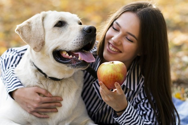 dog-apple-woman-commands-teaching