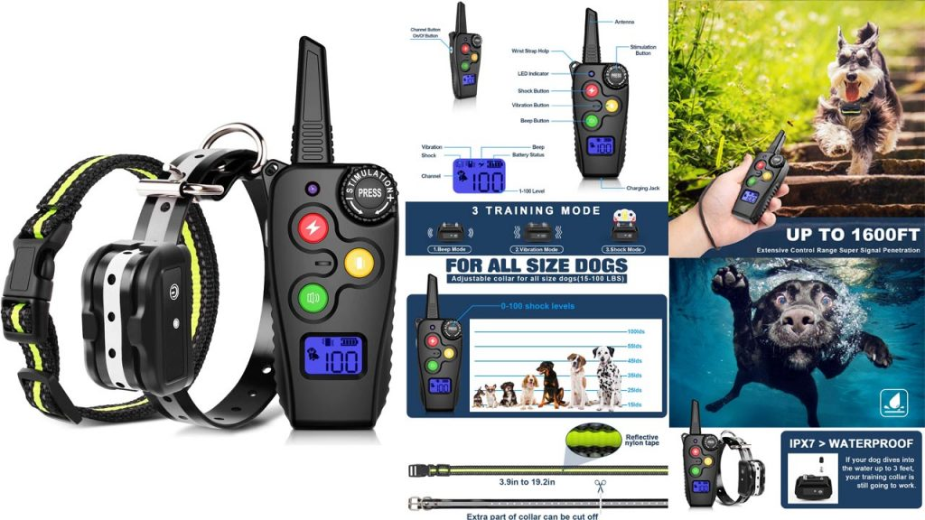 12 Best Dog Training Collars 2